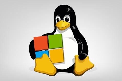 Desde que Ballmer dijo que Linux era un cáncer a Nadella y su amor por el Open Source: así ha sido la relación de Microsoft con el SO