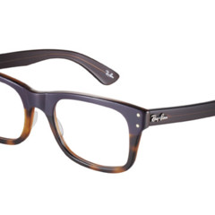 Foto 13 de 17 de la galería las-gafas-de-ray-ban-para-la-primavera-verano-2011 en Trendencias Hombre