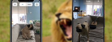 Google adds 50 new 3D animals: hippo, squirrel, giraffe and many more
