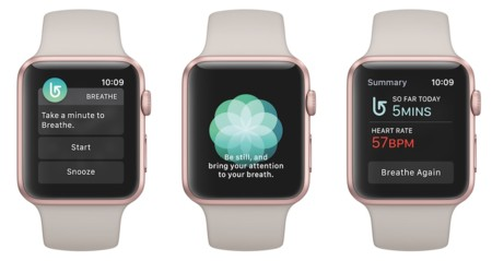 Watchos3 Breathe Copia