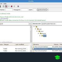 7 clientes FTP gratis para Windows, macOS, GNU/Linux, Android e iOS