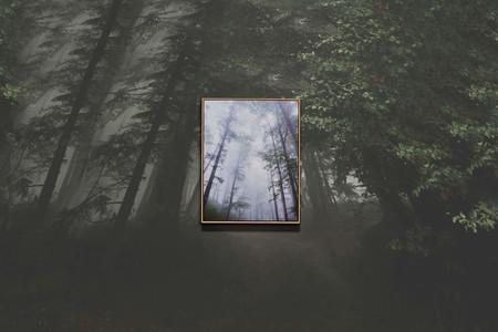 Frame Speaker Forest