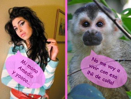Amy Winehouse: no sin mi mono
