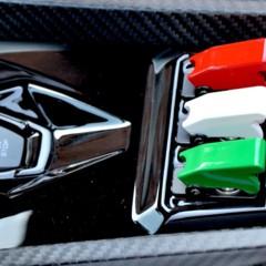 Foto 12 de 13 de la galería entregan-primer-lamborghini-veneno-roadster-a-cliente-aleman en Motorpasión México