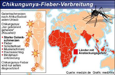 Cuidado con la fiebre Chikungunya