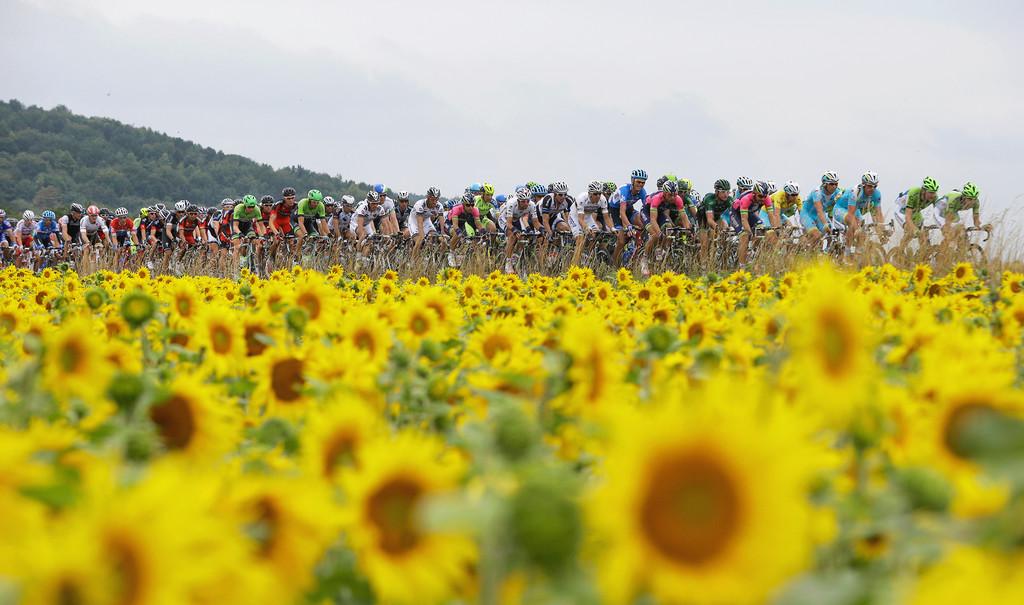 Ciclismo a 54 km/h sin pedalear: la ciencia que explica las propiedades aerodinámicas del pelotón
