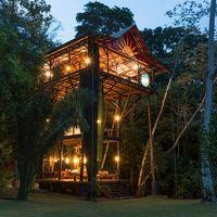 La casa del árbol más espectacular que hemos visto está en Airbnb... y a los pies del océano