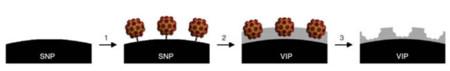 Partícula nanotecnológica contra virus