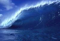 España en el Día Mundial de los Oceános