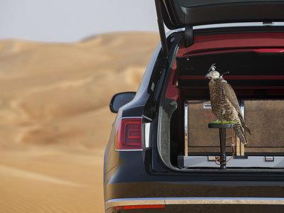 Amante de la cetrería, tu halcón ya puede viajar cómodamente en el Bentley Bentayga Falconry