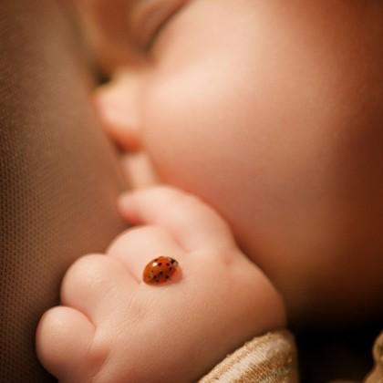 Consejos para retratar a los recién nacidos