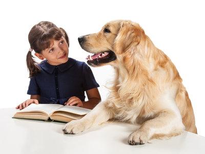 Cuando los perros ayudan a los niños a leer
