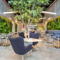Los jardines verticales, una tendencia al alza