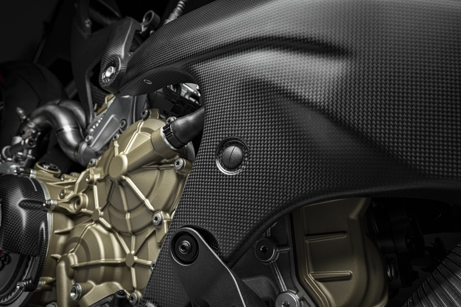 Foto de Ducati Panigale Superleggera V4 2020 (37/61)