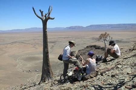 El arrecife más antiguo ha sido descubierto en Namibia