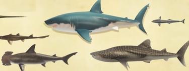Guía Animal Crossing New Horizons: cómo pescar tiburones