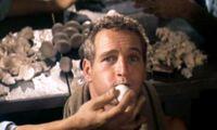 Especial Paul Newman : 'La leyenda del indomable'