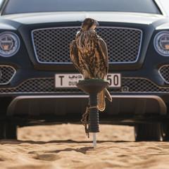 Foto 6 de 36 de la galería bentley-bentayga-falconry en Motorpasión