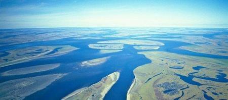 Microsoft Research desarrollará software para modelar los ecosistemas de la tierra