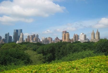 Vistas desde el MET de Nueva York