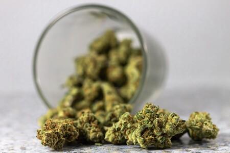 Diputados Aprueban El Consumo Y Comercio De Marihuana En Mexico Se Permitiran Hasta Ocho Plantas En Casa Y Portacion De 28 Gramos