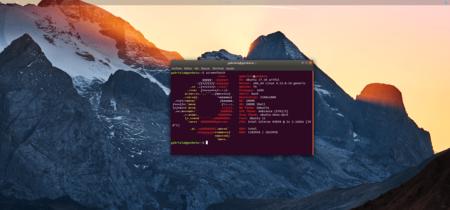 Ubuntu 17.10, análisis: cuando volver a tus raíces te sienta bien
