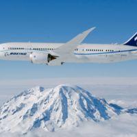Boeing quieren aprovechar los residuos forestales en biocombustible para sus aviones