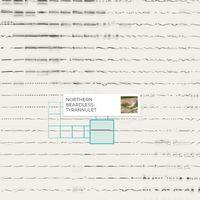 Esta web te permite reproducir sonidos de 14.000 aves perfectamente ordenados mediante Machine Learning