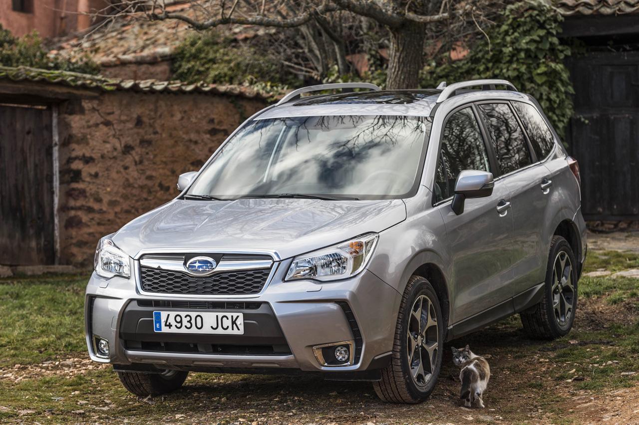 Foto de Subaru Forester 2015 (presentación) (30/33)