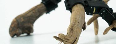 Científicos japoneses crean un robot hecho con ramas de árbol y capaz de aprender por sí mismo a moverse