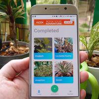 Esta es la app que necesitas para dejar de matar a todas tus plantas