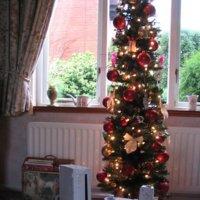 Imagen de la semana: un entorno navideño