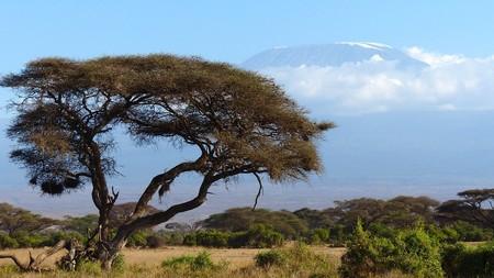 Kilimanjaro 720845 960 720