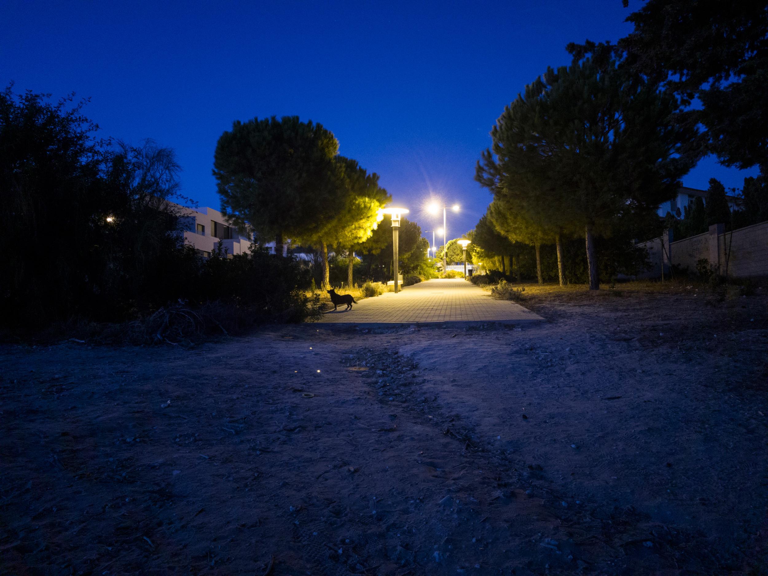 Foto de iluminación complicada (1/4)
