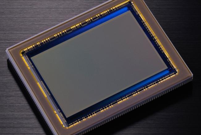 Sensor D800