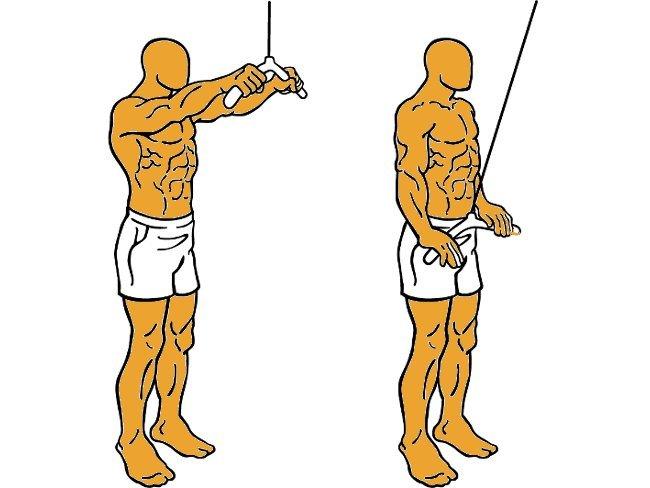 el ejercicio pullover para que sirve