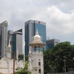 Foto 35 de 95 de la galería visitando-malasia-dias-uno-y-dos en Diario del Viajero