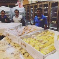Panaderos mexicanos hornean cientos de piezas de pan dulce para ayudar a las víctimas de Harvey