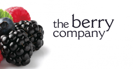 The Berry Company: me encontré con jugos de berries naturales y ¡me encantaron!