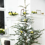 Tres árboles de Navidad decorados con poinsettias para tres estilos