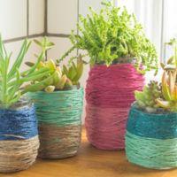 Hazlo tú mismo: macetas para cactus con hilo de color y tarros de cristal reciclados