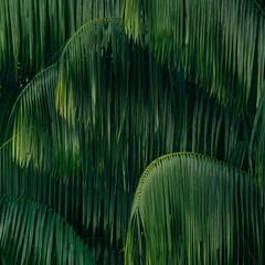 Foto 4 de 14 de la galería fondos-de-naturaleza-1 en Xataka Android