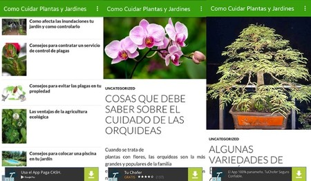 Cuidad Jardines