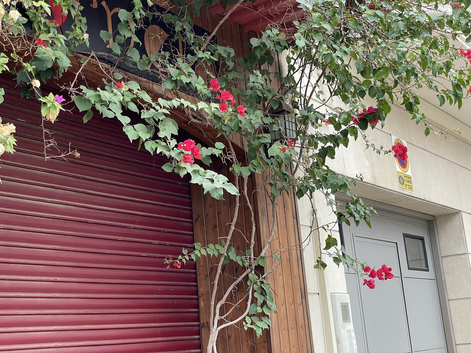 Foto de iPhone 12 Pro, galería (27/70)