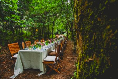 Mesa Bosque