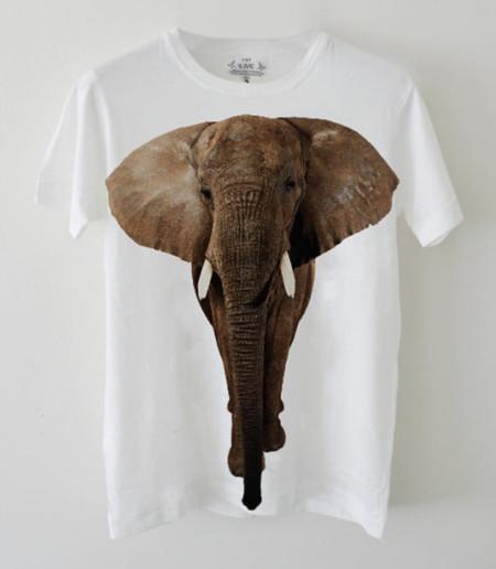 EDUN elefante
