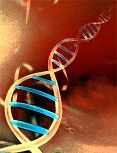 Francis Collins. Genoma, medicina y sociedad