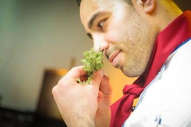 El aroma de tu comida impacta directamente sobre tu metabolismo, y también sobre tu peso