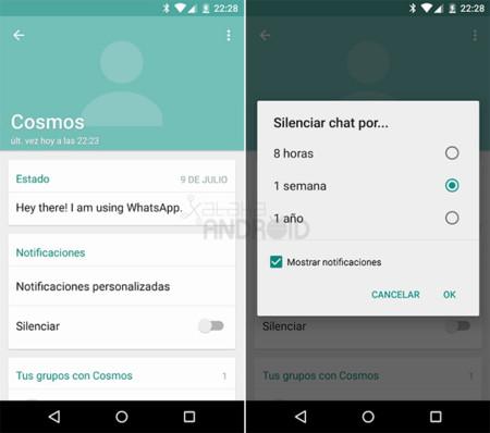 Cómo silenciar contactos y usar notificaciones personalizadas en WhatsApp