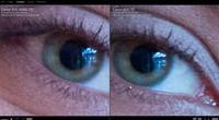 Una gran comparativa de las Canon EOS 6D, 5D Mark III, 7D, 600D y 5D Mark II